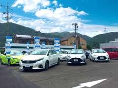 約45台の展示車を揃えております。軽自動車からミニバン、SUVなど幅広く取扱っております。