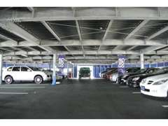 輸入車を中心に常時100台以上の屋内展示しております♪