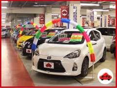 名車・希少車多数展示!全国の「カーチス」で買取した新鮮なおクルマが続々入荷中☆☆☆