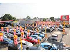 展示場には多くのお車を展示しております。見て・触って、じっくり決めて頂きたいです!