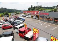 展示場には多くのお車を展示しております。見て・触って、じっくり決めて下さい!
