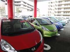 【新中併売】日差しが注ぐキレイな店内♪新車販売店と併設しているので、ご納得頂くまでお車選びが出来ます