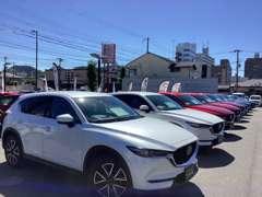 広大なスペースには常時50~60台の良質な展示車をズラリ展示です!是非お立ち寄りください!