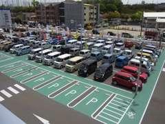 見てください!この迫力!とにかく広い展示場には、軽自動車からコンパクトカーまで、話題のスズキ車を多数取り揃えております!