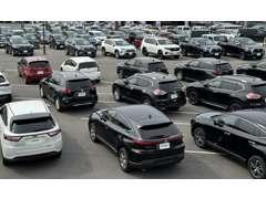 大創業祭開催中!新潟市では特色を活かした店舗運営をしています、この場合はどこ?なども相談もお待ちしております!