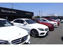 常時約50台を展示しております。ほぼ全ての車種をご試乗をいただけます!お気軽にご連絡ください!