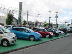 シブエ自動車(本社)には、お手頃な軽自動車が、常時50台以上展示・シブエ独自のお客様感謝イベントも開催。