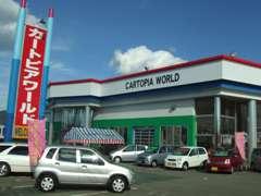 シブエ自動車販売は、カートピアワールド店(大型展示場)にも豊富な在庫車両を展示、お客様のご希望の1台が探せます。