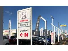 車種は軽自動車からミニバンまで豊富なラインナップを取り揃えております。ご希望の条件があれば全社の在庫からお探しできます!