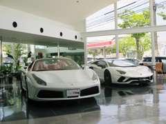 店内ショールーム、貴重なお車を展示しております。広い店内にてごゆっくりおくつろぎ下さい。