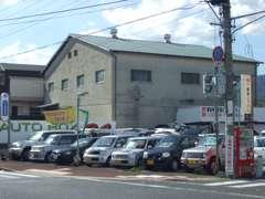 保険も日本興和、JAの取扱い店です!