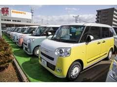 広い展示場には目移りしちゃうくらい軽・届出済未使用車が展示されてます