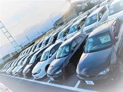 常時約120台展示中!!全車「修復歴なし」のこだわり品質です。