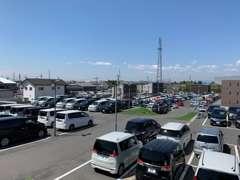 約3500坪の敷地に軽・コンパクト・ミニバン・SUV・セダン・スポーツなど常時250台以上を展示中!