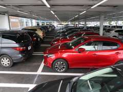 地域最大級の展示車300台以上!当店ではバレーサービスにてお車をご覧いただけます。