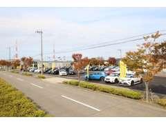 輸入車ディーラを展開している創業55年の老舗の会社です。