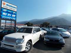 普通車から軽四・輸入車・旧車まで!幅広い車種の車輌を取り揃えています!