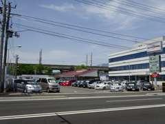 セダン・ミニバン・1BOX、人気のコンパクトカーや軽自動車、輸入車まで多数取扱い致しております。専門的なご提案もお任せ!