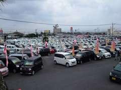在庫総数は軽自動車~輸入車まで1800台!