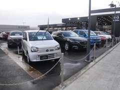 マツダ車を中心に、高年式の綺麗な車を常時展示しております。