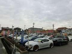 チャッツ本店展示場です!全店舗で総数250台の素晴らしい品揃えです!見るだけでも楽しい車のテーマパークとして来客多数です