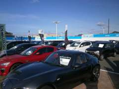 新型車種からお手頃価格のお車まで!普通車、新車共に取り揃えております!お車のご検討はまず当店へ!