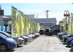 広~い展示場の豊富な展示車からアナタの1台を探して下さい!