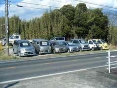 バラエティーにとんだリーズナブルな価格の下取り車も多数ございます。ぜひお問い合わせください。