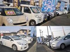 当店では店頭販売の格安車に加え、車買取に強化しております。査定は無料で高価買取を実施しております。
