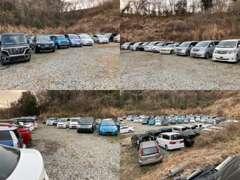 注文販売もしていますので、ご希望の車が展示車に無くても、予算に合わせたお車を探しすることも可能です。