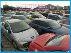 プロの目で厳選した仕入れを徹底しております!軽自動車から高級車・商用車まで幅広く取り揃えております!www.mariyam1.com